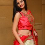 Big boobs Pallavi Naidu sexy blouse