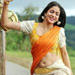 Sexy hot half saree Lavanya Tripathi navel nude photo