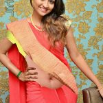 Neelima rani hot sexy navel red hot saree xxx tamil actress latest fake